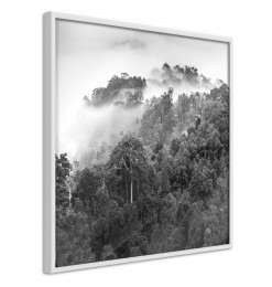 Póster - Foggy Forest